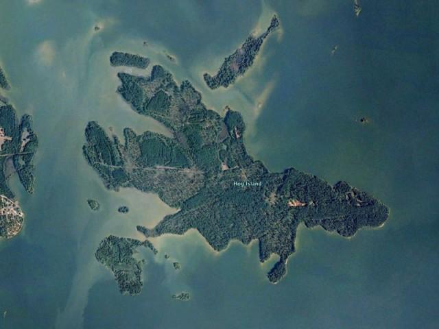 Hog Island, AL on map of newport nc, map of marshall nc, map of greensboro nc, map of belmont nc, map of fairfax nc, map of inverness nc, map of eden nc, map of halifax nc, map of waterford nc, map of jacksonville nc, map of concord nc, map of lincoln nc, map of oakland nc, map of mount pleasant nc, map of florence nc, map of mount holly nc, map of jamestown nc, map of morrisville nc, map of salisbury nc, map of franklin nc,